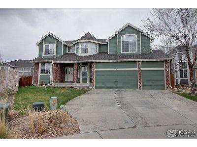 Johnstown Single Family Home For Sale: 336 Ricker Ln