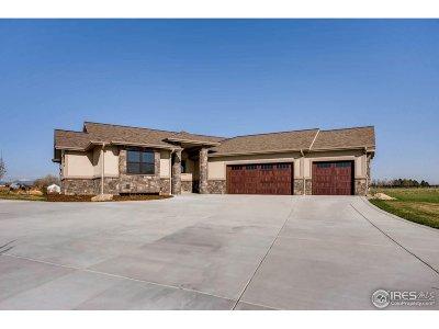 Severance Single Family Home For Sale: 37175 Soaring Eagle Cir