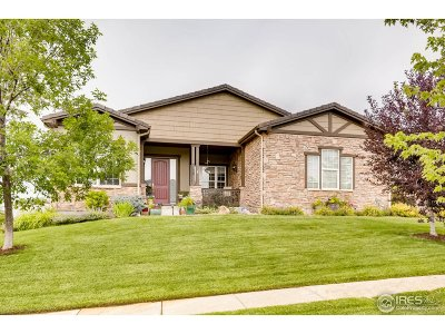 Broomfield Single Family Home For Sale: 3120 Traver Dr