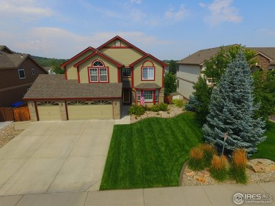 Loveland Single Family Home For Sale: 4275 Promontory Ct