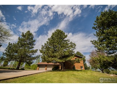Berthoud Single Family Home For Sale: 1821 River Glen Dr