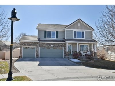 Johnstown Single Family Home For Sale: 3533 Pinewood Ct