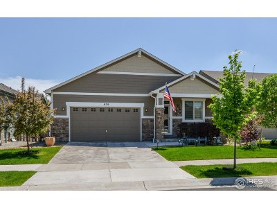 Fort Collins Single Family Home For Sale: 829 Brookedge Dr