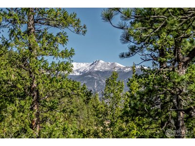 Estes Park Residential Lots & Land For Sale: Lot 48 Hummingbird Dr