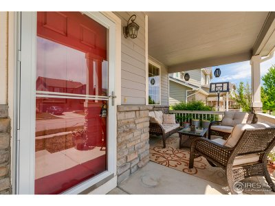 Fort Collins Single Family Home For Sale: 626 Peyton Dr