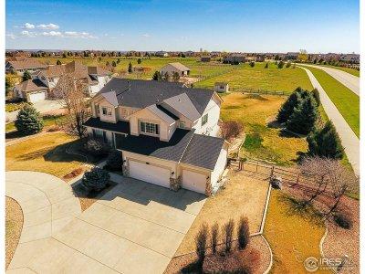 Windsor Single Family Home For Sale: 8799 Longs Peak Cir