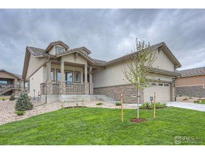Broomfield Single Family Home For Sale: 15676 Puma Run