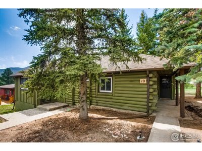 Estes Park Single Family Home For Sale: 1250 S Saint Vrain Ave #10