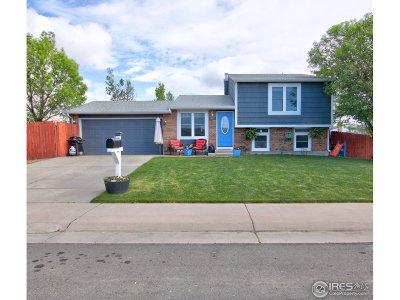 Bennett Single Family Home For Sale: 831 Centennial Dr