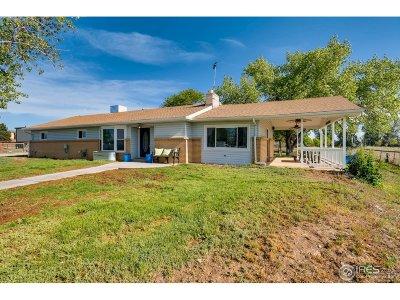 Brighton Single Family Home For Sale: 8963 E 161st Pl