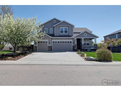 Longmont Single Family Home For Sale: 1908 Lochmore Dr