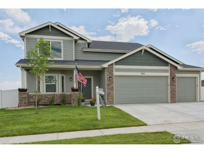 Weld County Single Family Home For Sale: 725 Blue Jay Dr