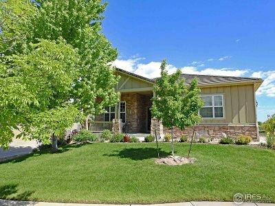 Broomfield Single Family Home For Sale: 3001 Rams Horn Run
