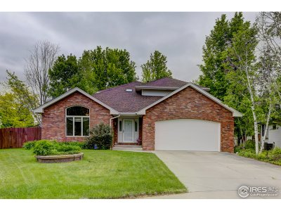Greeley Single Family Home For Sale: 1558 41st Ave Ct