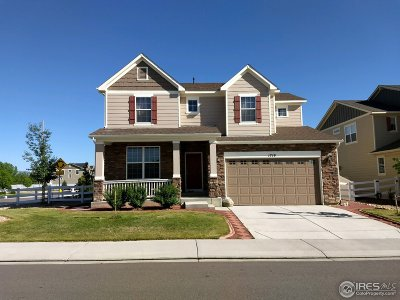 Longmont Single Family Home For Sale: 1719 Dorothy Cir