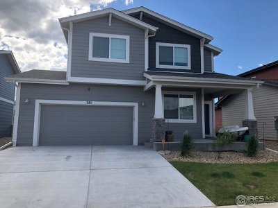 Fort Collins Single Family Home For Sale: 381 Stout St