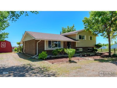 Broomfield Single Family Home For Sale: 15464 Lipan St
