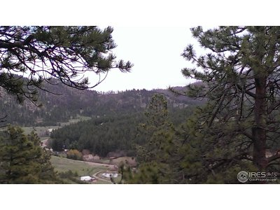 Bellvue CO Residential Lots & Land For Sale: $299,000