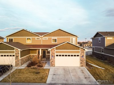Berthoud Condo/Townhouse For Sale: 728 13th St