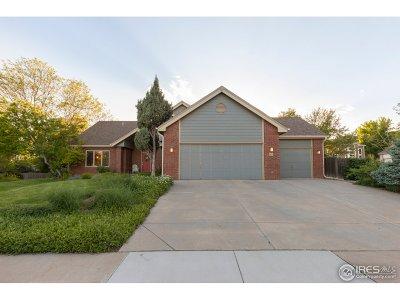 Fort Collins Single Family Home Active-Backup: 815 Langdale Dr