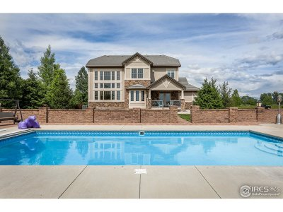 Berthoud Single Family Home For Sale: 1020 Berthoud Peak Dr
