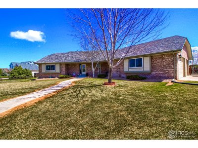 Brighton Single Family Home For Sale: 13809 E 133rd Dr