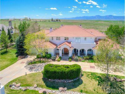 Niwot Single Family Home For Sale: 6331 Snowberry Ln