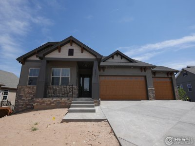 Loveland Single Family Home For Sale: 4821 Mariana Hills Cir