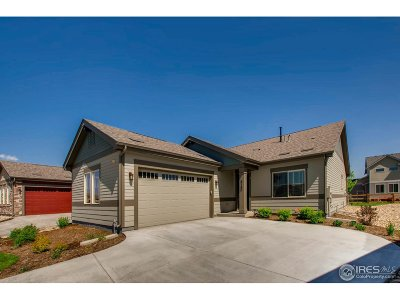 Loveland Single Family Home For Sale: 4185 Long Pine Lake Dr