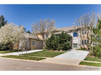 Superior Single Family Home For Sale: 745 E Wiggins St
