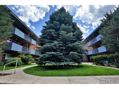 Fort Collins Condo/Townhouse For Sale: 620 Mathews St #214
