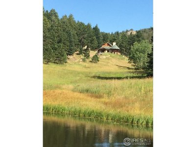 Estes Park Single Family Home For Sale: 4333 Hell Canyon Rd