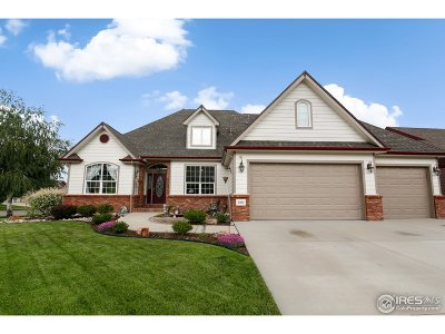 Single Family Home For Sale: 3595 Capitol Peak Dr