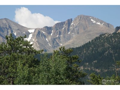 Estes Park CO Condo/Townhouse For Sale: $4,000