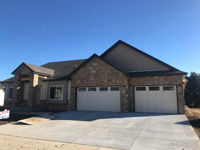 Loveland Single Family Home For Sale: 740 Deer Meadow Dr