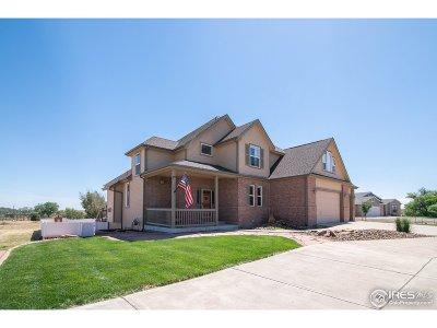 Hudson Single Family Home For Sale: 32455 E 167th Dr