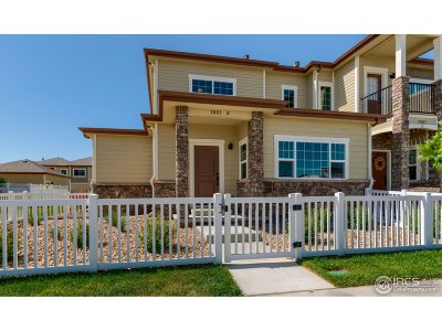 Fort Collins Condo/Townhouse For Sale: 3803 Precision Dr #E