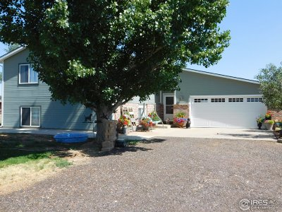Hudson Single Family Home For Sale: 35 Cook Ct
