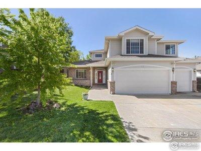 Longmont Single Family Home For Sale: 717 Brookside Dr