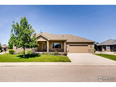 Loveland Condo/Townhouse For Sale: 3007 Crooked Wash Dr