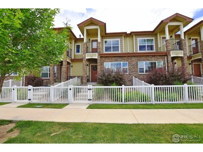 Fort Collins Condo/Townhouse For Sale: 3815 Precision Dr #D