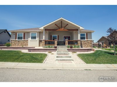 Loveland Single Family Home For Sale: 290 Meadowsweet Cir