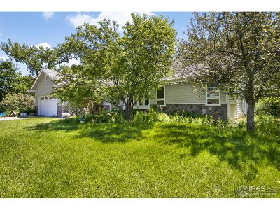 Fort Collins Single Family Home For Sale: 2221 Stonecrest Dr