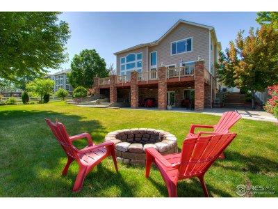 Fort Collins Single Family Home For Sale: 1402 Forrestal Dr