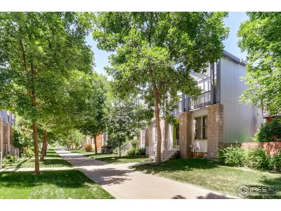 Longmont Condo/Townhouse For Sale: 807 Tempted Ways Dr