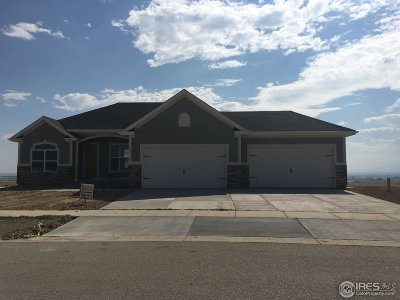Weld County Single Family Home For Sale: 3791 Bridle Ridge Cir