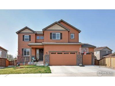 Loveland Single Family Home For Sale: 183 Vela Ct