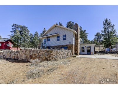 Estes Park Single Family Home For Sale: 1430 Strong Ave