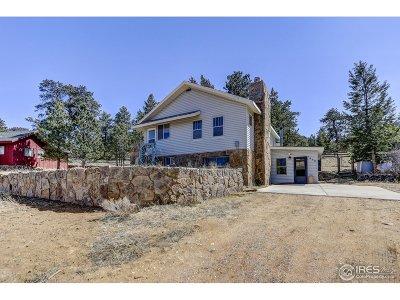 Estes Park CO Single Family Home For Sale: $500,000