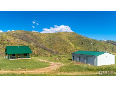 Larimer County Single Family Home For Sale: 265 Helms Deep Rd